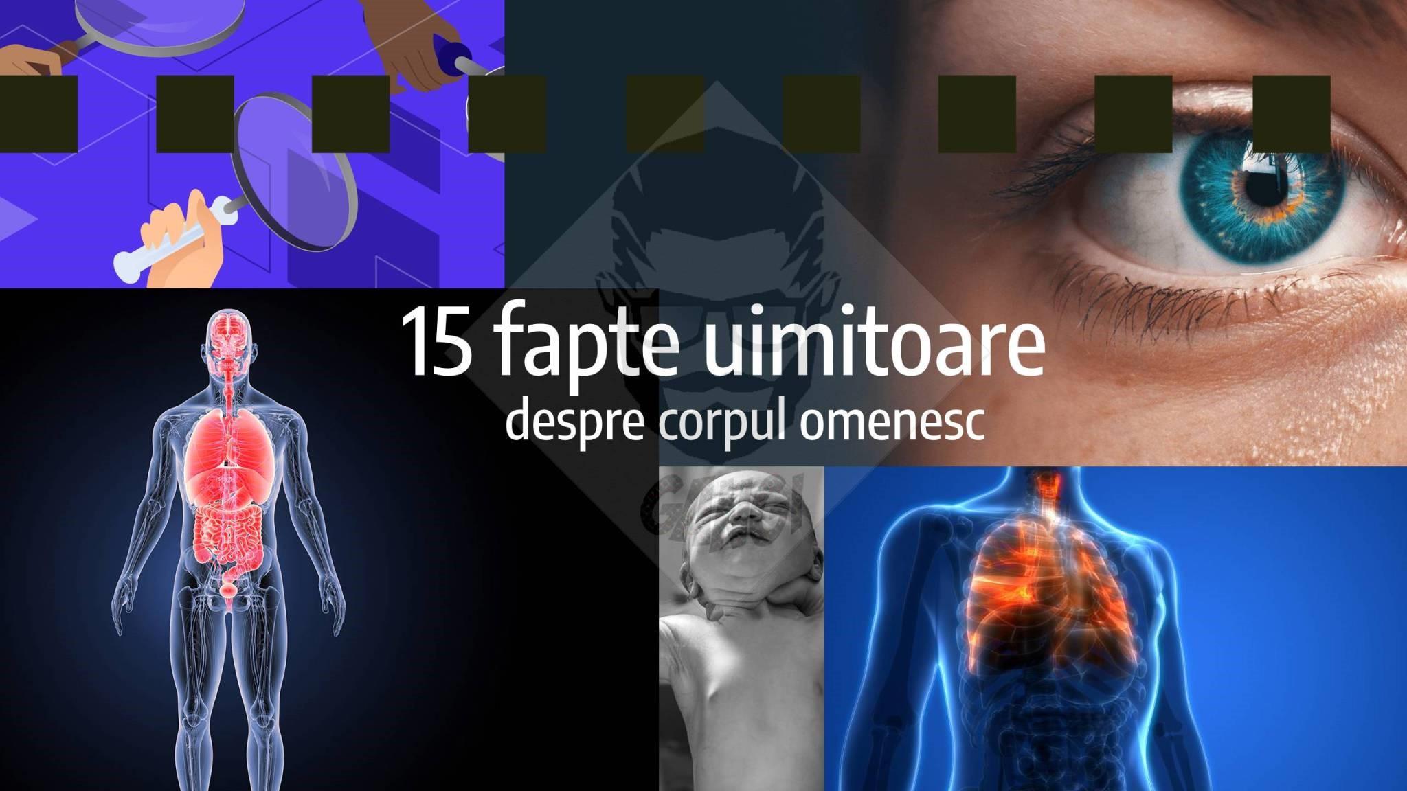15 fapte uimitoare despre corpul uman